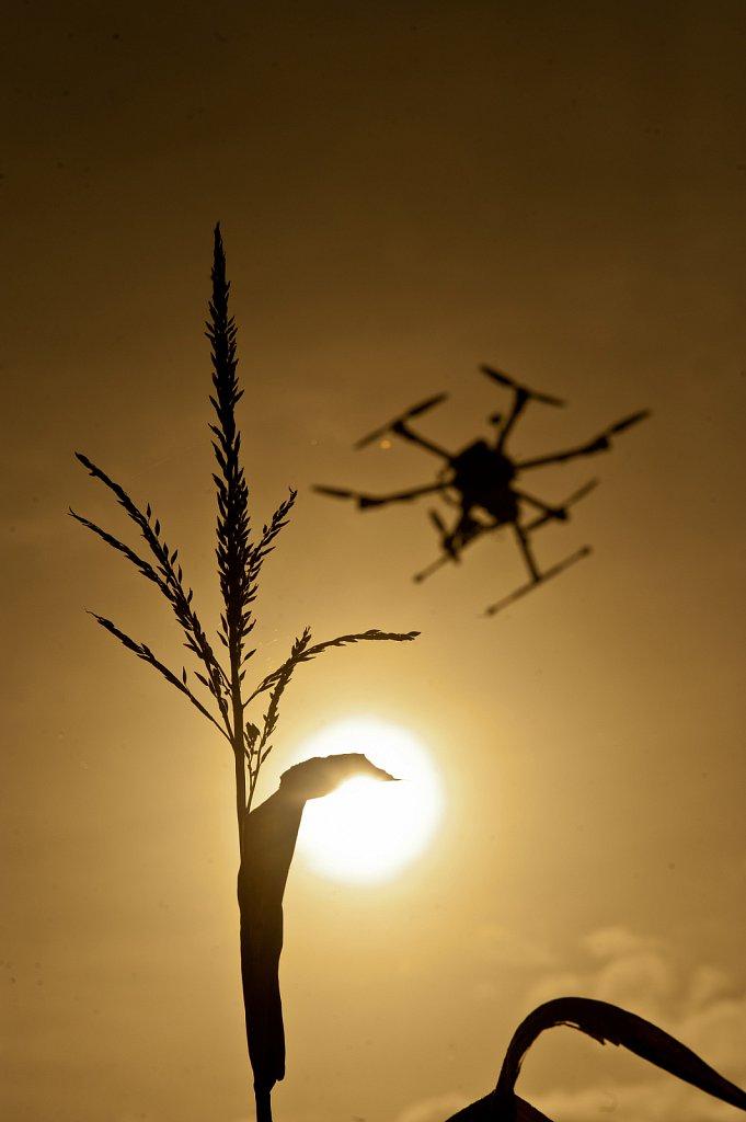 HexCam Agricultural Drones